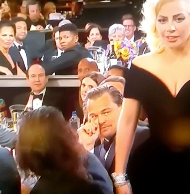 Leonardo DiCaprio looks at Lady Gaga as she walks past him at Golden Globes