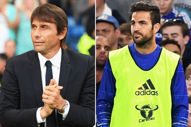 Image result for Antonio Conte fails to rule out Cesc Fabregas going out on loan in January