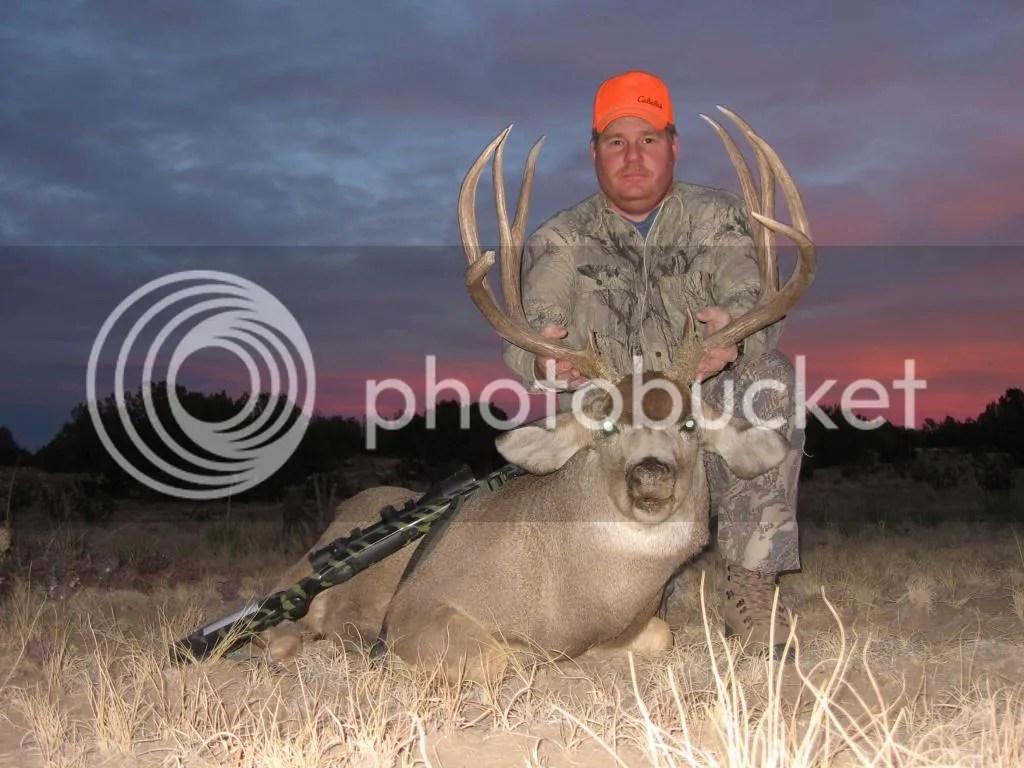 Position Ears Deer Mount