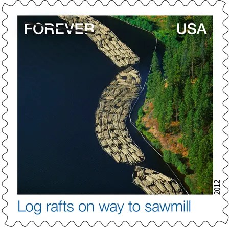 Log Rafts on Way to Sawmill