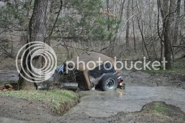 Image result for fetid swamp pictures