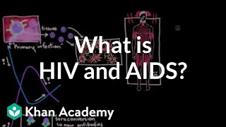 What is HIV and AIDS?