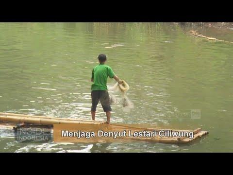 Menjaga Denyut Lestari Ciliwung - Inside Indonesia