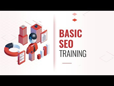 SEO Basics Training Coaching Program
