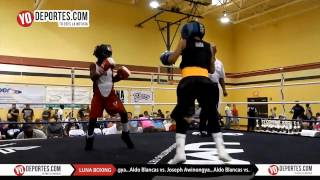 Aldo Blancas vs. Joseph Awinongya Joliet Luna Boxing