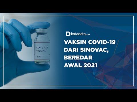 Vaksin Covid-19 dari Sinovac, Beredar Awal 2021   Katadata Indonesia