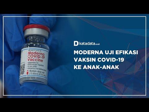 Moderna Uji Efikasi Vaksin Covid-19 ke Anak-anak   Katadata Indonesia