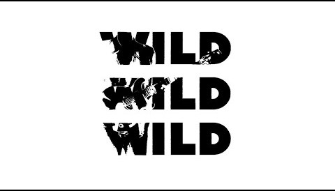 Download Music James Bay - Wild Love