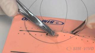 Running Simple Sutures