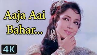 'Aaja Aai Bahar Dil Hai Bekarar' Full 4K Video Song Sadhana , Lata Mangeshkar , Rajkumar