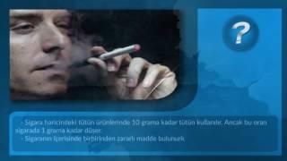 Tütün Mü Daha Zararlı Yoksa Sigara Mı ?