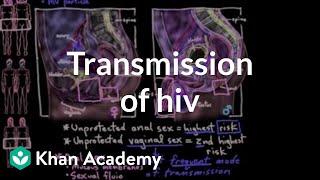 Transmission of HIV - Explained