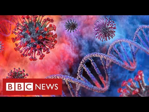 """Coronavirus will remain a threat """"for a very long time"""" warn leading scientists - BBC News"""