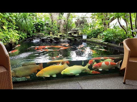 Download thumbnail for Garden Designs | TOP 3 MOST ... on Backyard Koi Pond Designs  id=24977