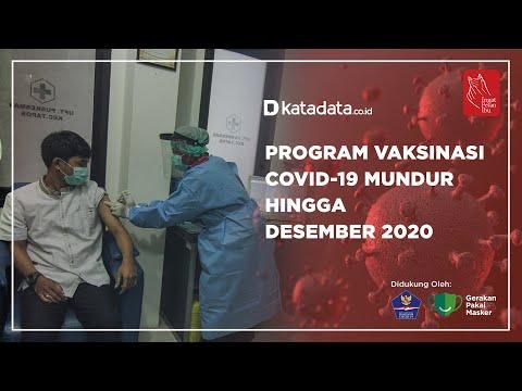 Program Vaksinasi Covid-19 Mundur Hingga Desember 2020 | Katadata Indonesia
