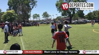 Black Lions vs. Chicago Dynamo Chicago Women Premier Soccer League