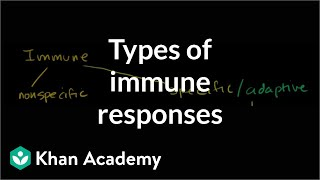 Types of immune responses