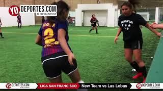 New Team vs. Las Lobas Liga San Francisco de Chicago, Il