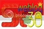 steo blog