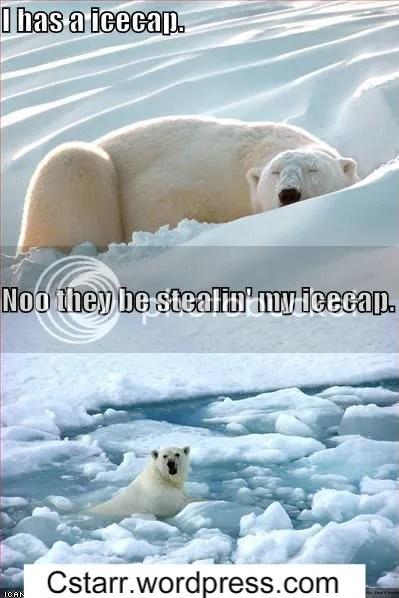 I has a icecap