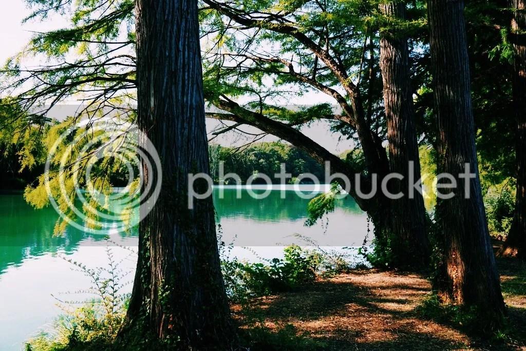 photo image.jpg8_zps9l3wj4ra.jpg