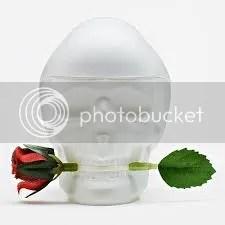 Ed Hardy Skulls and Roses