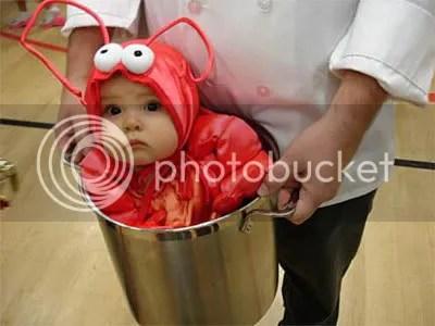 https://i1.wp.com/i306.photobucket.com/albums/nn277/LuS172/funny-baby-costume.jpg