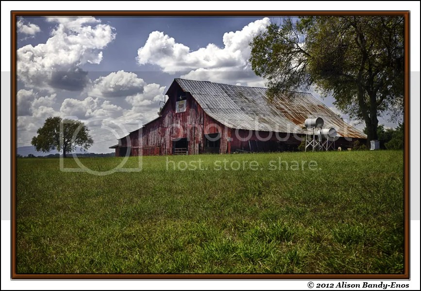 Country Barn 3