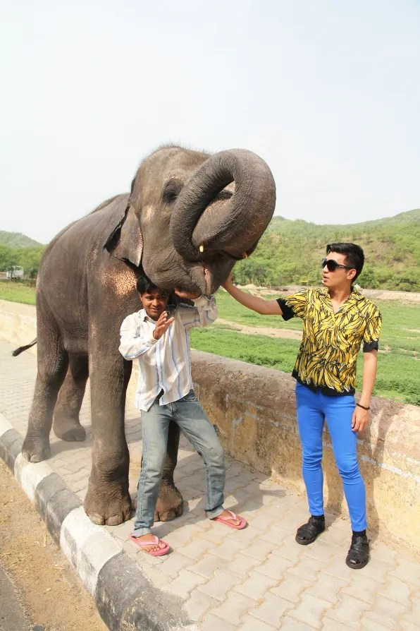 Bryanboy with a baby elephant in Jaipur