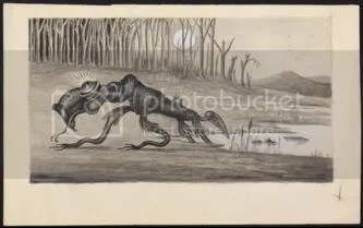 bunyip Pictures, Images and Photos