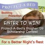 Protect-A-Bed Blogher Scholarship Contest