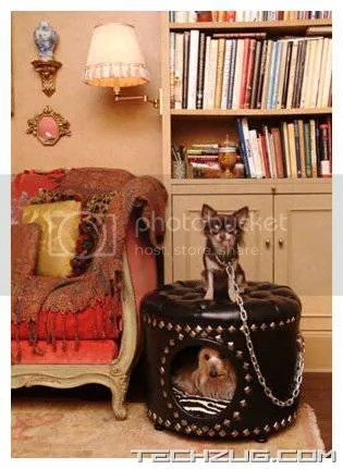 Luxury Houses for Your Pets