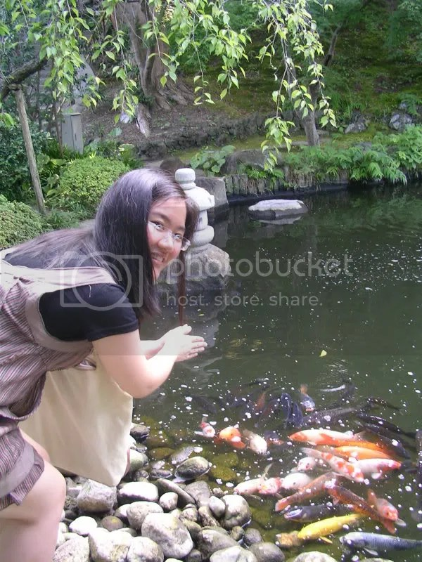 The koi were scrambling to get to shore. Im beginning to suspect they are piranhas in disguise.