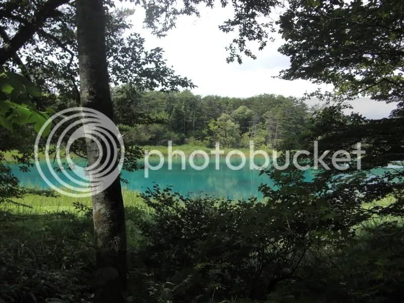 Brilliantl blue sky and pond~