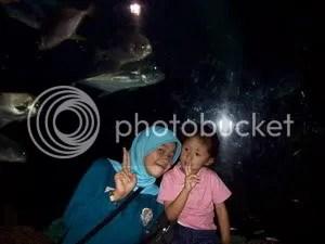 depan akuarium besaar