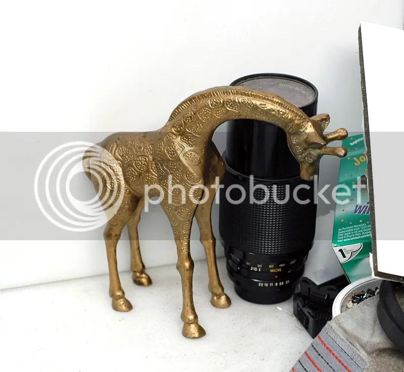 photo GiraffeSet2_zpsd8a480b8.jpg