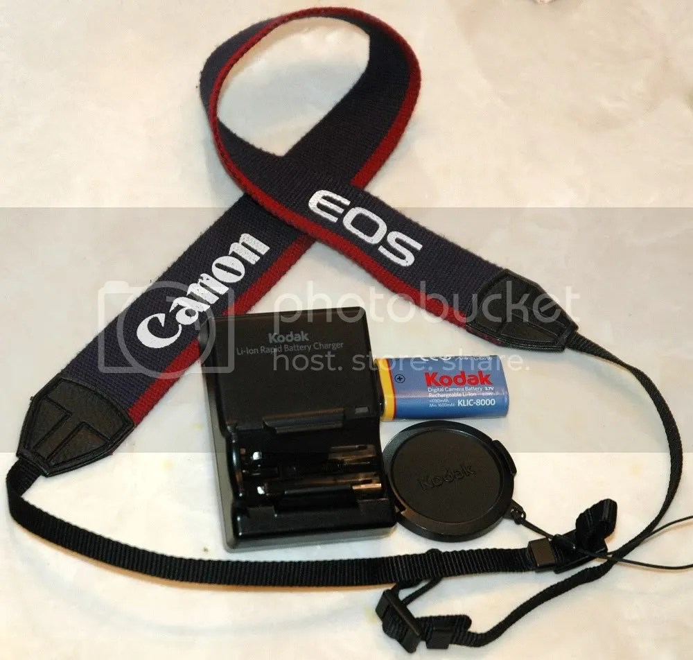 You will bid on this camera