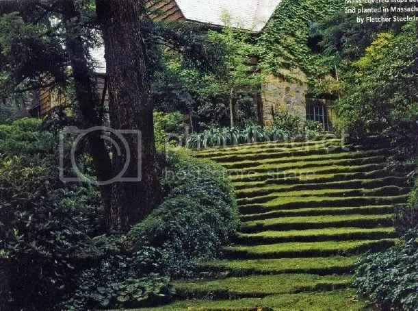 https://i1.wp.com/i353.photobucket.com/albums/r382/emeraldsrain2/Art/Nature/Untitled2.jpg