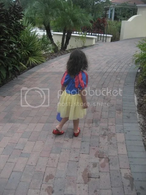 photo IMG_3817_zpsmvadmy8v.jpg