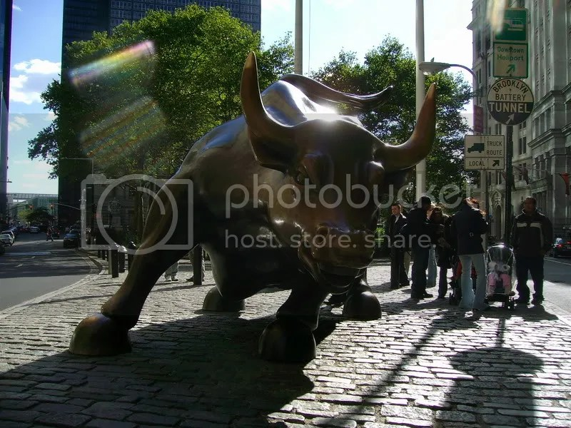 wall street bull