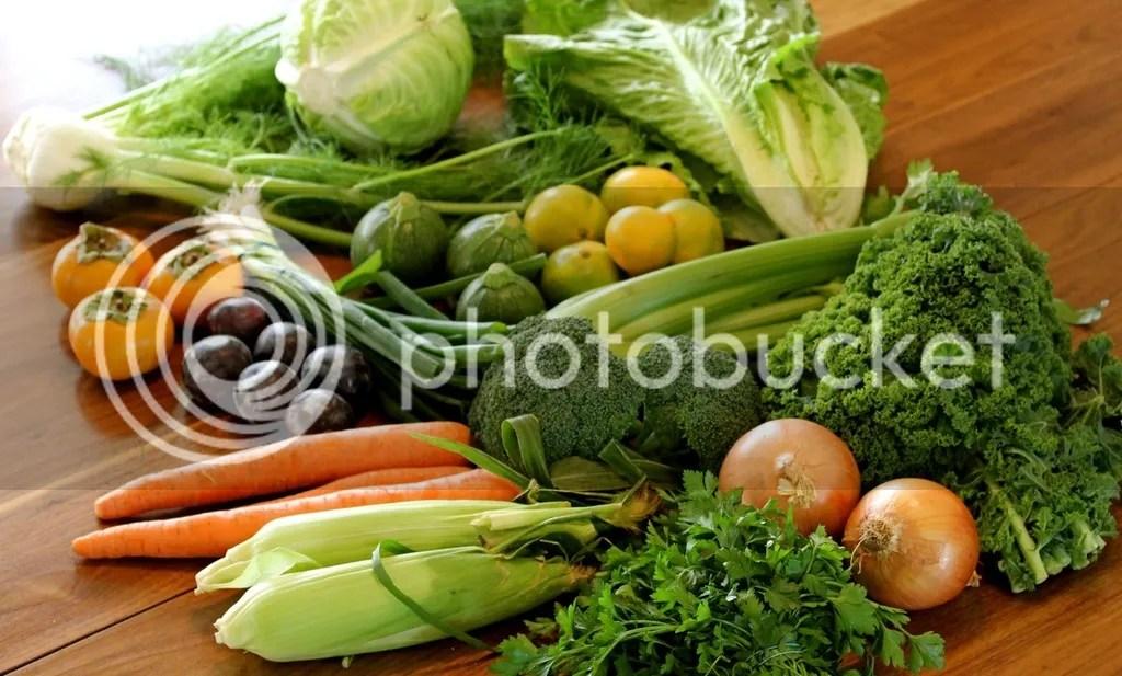 Agar Berat Badan Turun Dalam Waktu Singkat Pastikan Anda Banyak Mengkonsumsi Sayuran