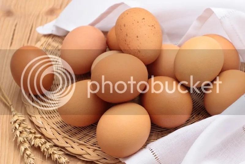 Cara Memutihkan Kulit Tubuh Cepat Dan Aman Dengan Telur