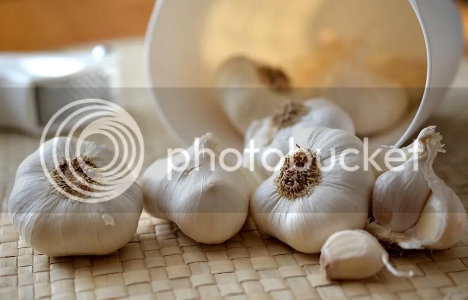 Mengatasi Jerawat Diwajah Dengan Menggunakan Bawang Putih