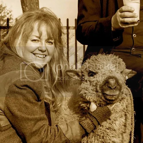 Shepherd Montana Jones, with Shropshire sheep named