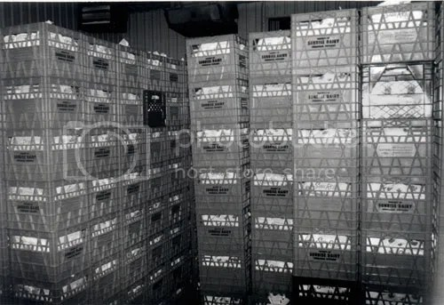 Milk crates at the former Sun Rise Dairy in Wingham