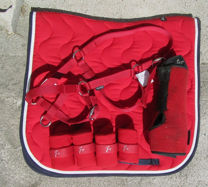 tapis paddock sport dressage rouge