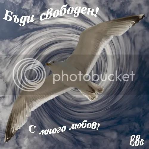 https://i1.wp.com/i371.photobucket.com/albums/oo160/lubov_lux/lubov/2640406432_32087dca64.jpg