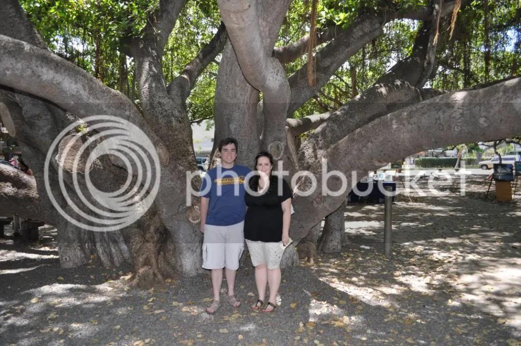 Us under the big banyan tree in Lahaina