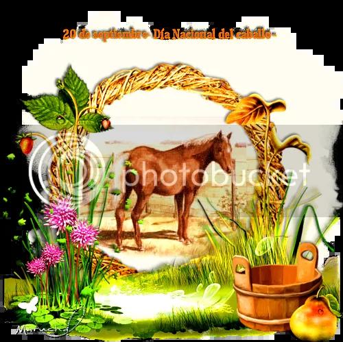 photo 20 de septiembre- Diacutea Nacional del caballo -_zpsk7pjupc4.png