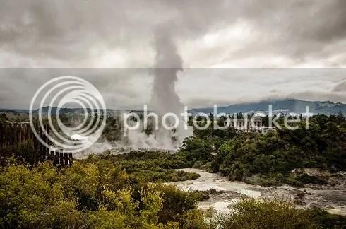 NZ photo _DSC0015_zps73e3f122.jpg